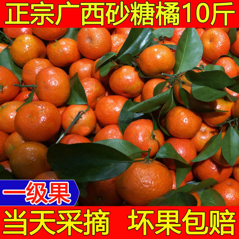 正宗广西沙糖桔水果薄皮2/10斤桔子砂糖橘小橘子新鲜甜柑橘砂糖桔