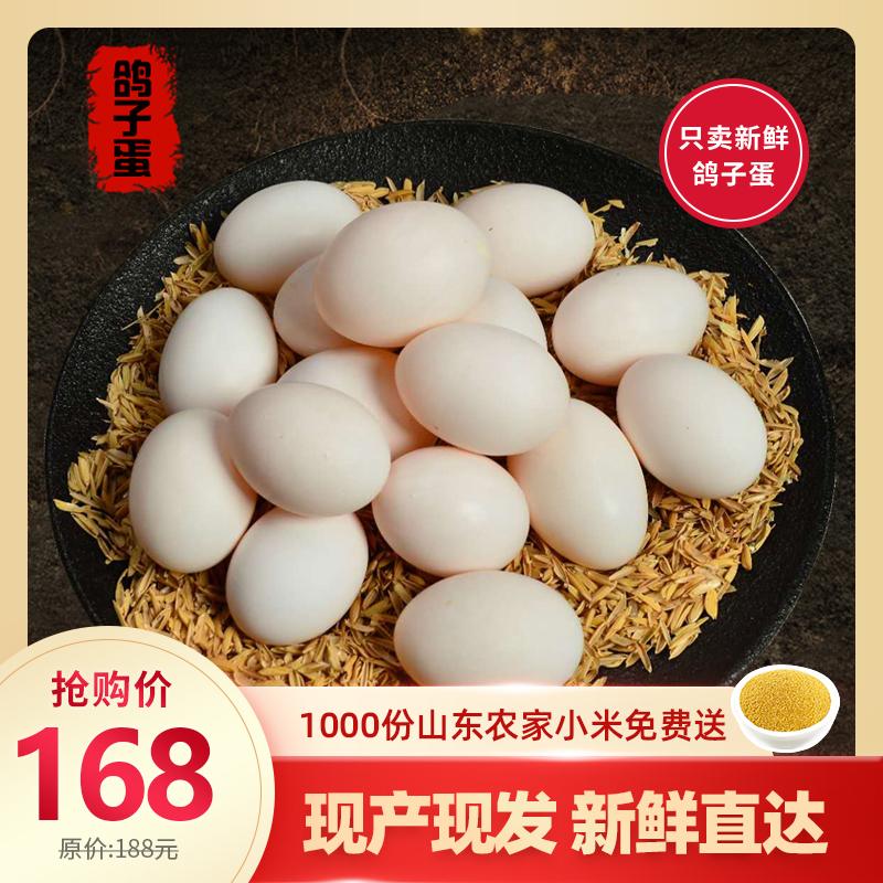 【顺丰包邮】精品新鲜鸽子蛋宝宝孕妇放心吃30枚 18-21g